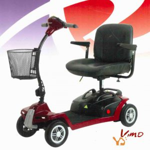 scooter modelo mikra